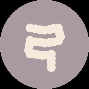 Icona Patologie del duodeno
